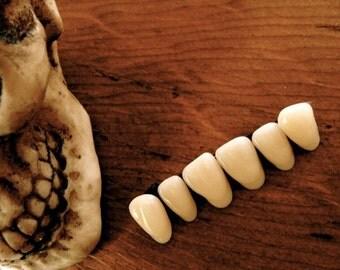 Vintage Medical Teeth