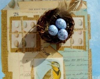 Beautiful Blue Speckled Plastic Eggs