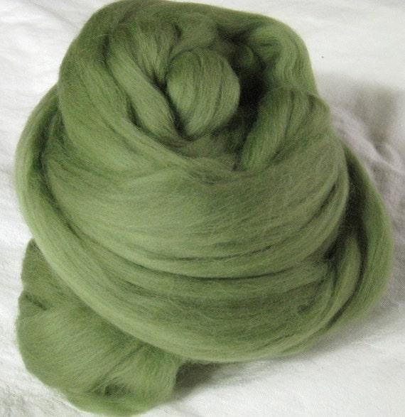 Merino Wool Roving - Garden Ivy - 3 oz.