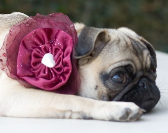 Dog Collar and Flower Bow Cranberry Wedding Photo Prop