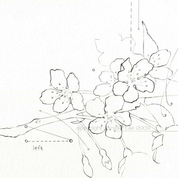 How To Draw A Cherry Blossom Tree In Pencil Minimal cherry blossoms fine