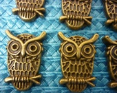 Owl Charms Antique Bronze  6