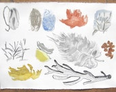 Abstract Nature Collection, original watercolor painting