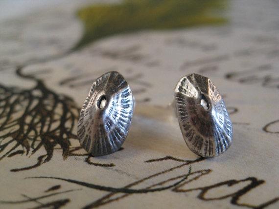 Limpet Shell Earrings