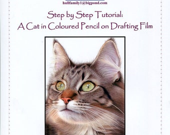 Step by Step Art Tutorial - Drawing a Cat using Coloured Pencils on Drafting Film
