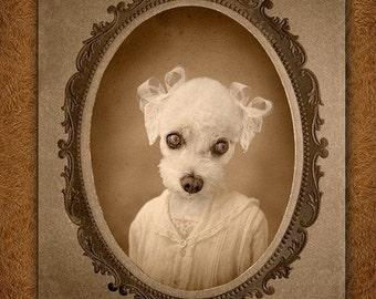 5x7 inch Hot DigitalDog Bichon Poodle Daisybell
