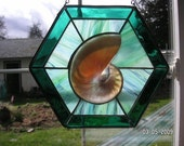 Sliced Nautilus window in Jade