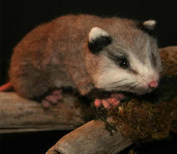 Life Size Baby Opossum OOAK Needle felted w Real wood Log