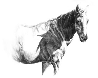 EQUINE FINE ART Only the Lonely Original Graphite Drawing by Joanna Zeller Quentin