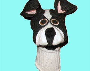 Boston Terrier Sock Puppet