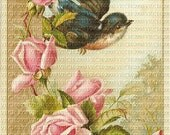 Digital Reprints Set of 3 Roses Birds Vintage Victorian Collage Art 2000