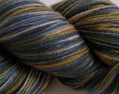 Reserved for April/Appleworm:    Merino/silk fingering weight yarn, handpainted
