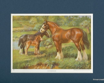 1923 Clyesdale Horse Vintage Print