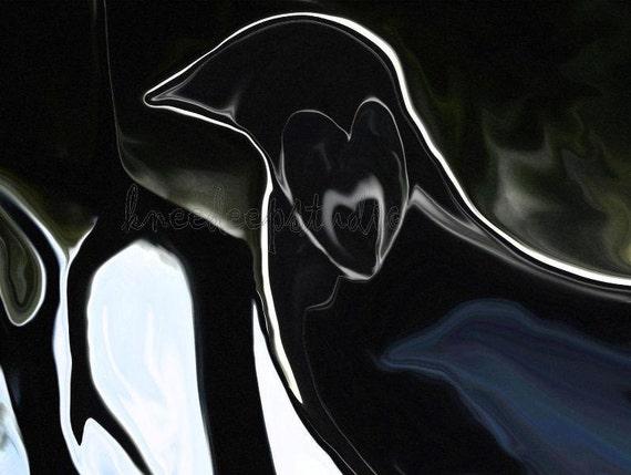 Raven's Heart photograph altered abstract fine art 8x10 black bird modern wall decor