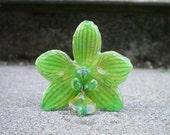 REAL Natural Small Green ORCHID Pin and Pendant
