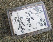 Garden Silhouettes Stamp Set of 6 Botanical Flowers Stampin Up