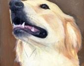 Happy Playful Golden Retriever Dog on Brown Background Original Painting by Clair Hartmann