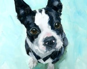 RESERVED  Boston Terrier, Bull, Brown Eyes, Blue, Teal background, Original Painterly, Realism, Oil Painting by Clair Hartmann