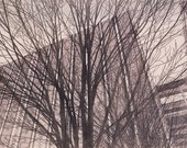 City Trees, Multi Block, Hand Pulled, Linoleum Relief Print