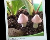 2 sweet powdery pink mini fairy dust mushrooms for your terrarium or planter