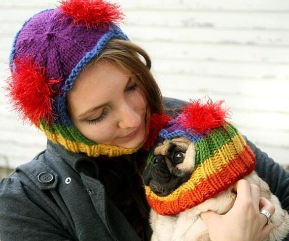 Matching Dog and Human Rainbow Hat Gift Set