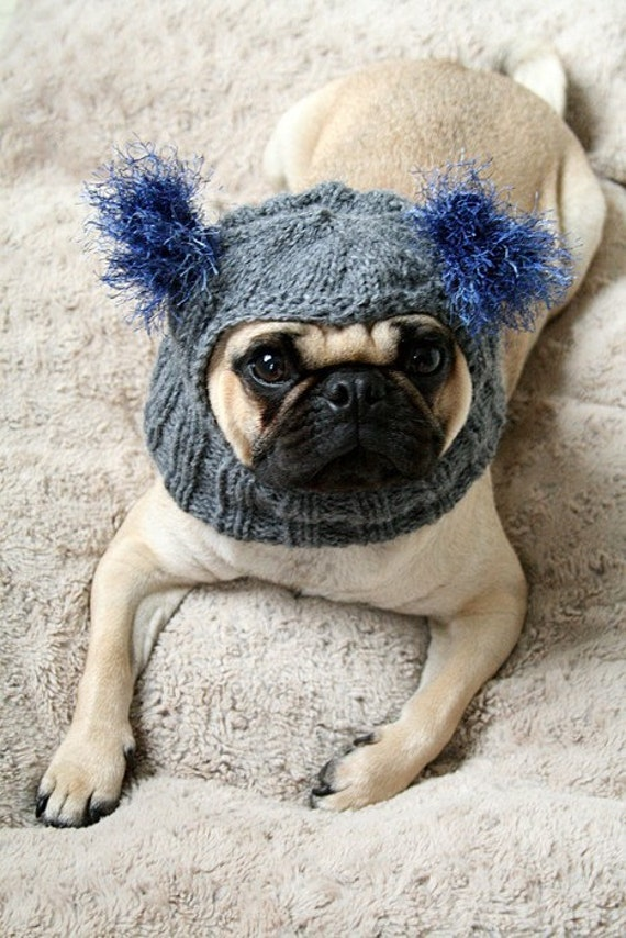 Knitting Pattern For Pug Hat : Snuggly Pug Alien Hat