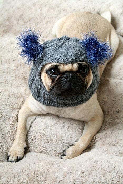 Pug Balaclava Knitting Pattern : Snuggly Pug Alien Hat