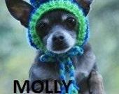 DOGGY HATS - FAIR ISLE BLUE