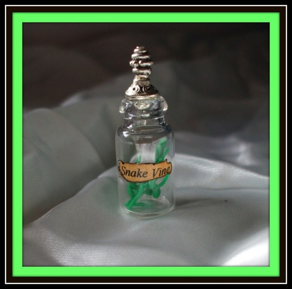 Gothic Witch Poison Snake vines spell bottles dollhouse miniature