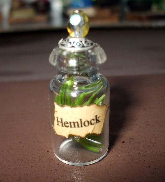 Witch Wizard Gothic Hemlock dollhouse miniature Spell bottle halloween