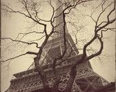 Eiffel Tower, Structure - Holga Suite, Paris, France