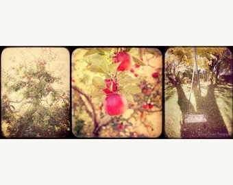 The Orchard - a ttv style Triptych