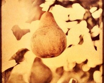 Copper Pear, Pear, Rustic Decor