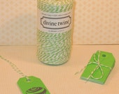 Lime Green Shipping tags (25) and Divine Twine (5 Yds)