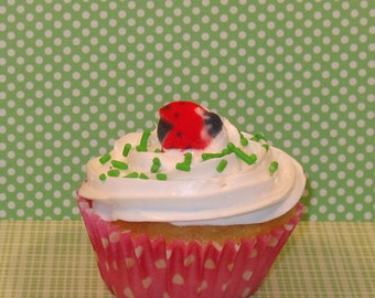 Lady Bugs Edible Sugar Toppers   (12)