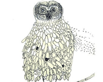 The story teller - owl drawing print or note card