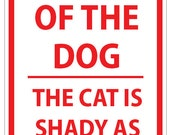 Beware of Dog and Shady Cat Sign
