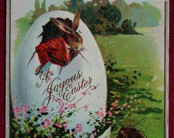 1911 Easter Postcard Dressed Rabbit In Large Egg