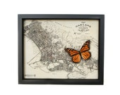 Framed Map of Oakland California with Monarch Butterfly