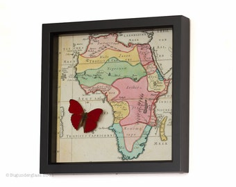 Red Butterfly with Old African Map