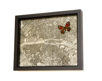 Map of Paris Archival Print 1776 with real butterfly