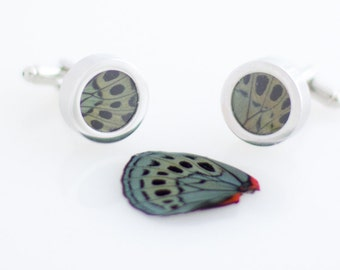 Butterfly Wing Cuff Links Darwin Butterfly Gift