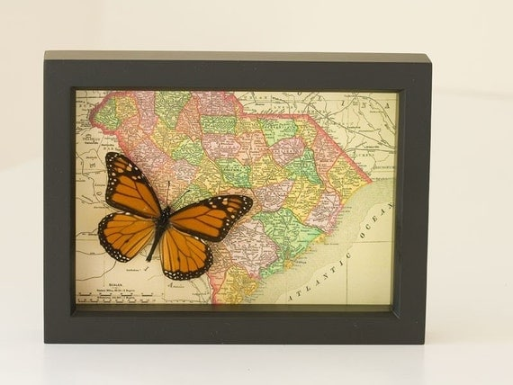 Historic Map of South Carolina 1895 with native Monarch Butterfly