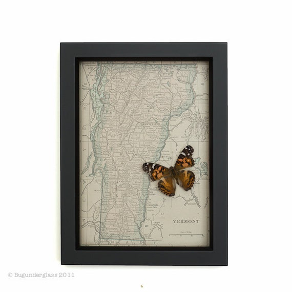 Map of Vermont Butterfly on Old Map