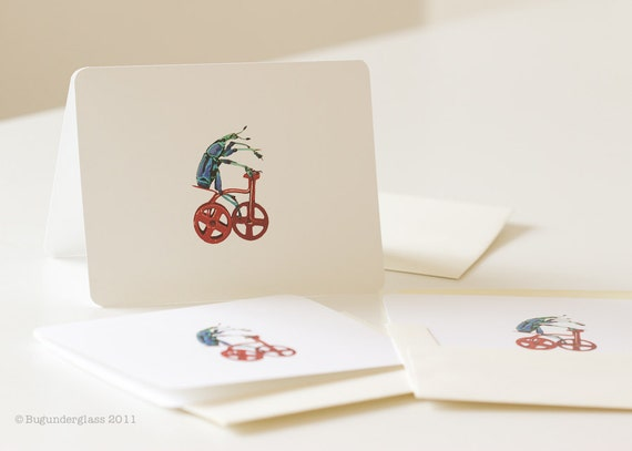 Blank Greeting Card Beetle Riding Tricycle