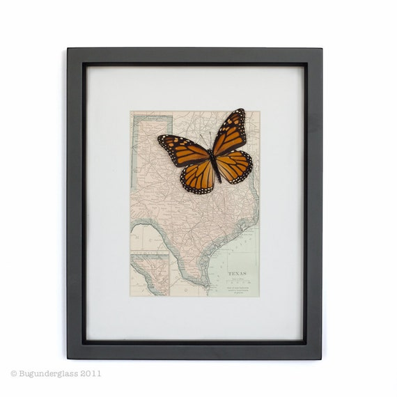 Vintage Map of Texas with Monarch Butterfly