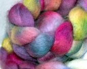 Hand Dyed BFL and Silk 4 ounces All the Pretty Flowers