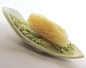 Soap Dish Sponge Dish Seafoam Green