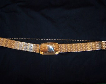 Cinch Belt, Gold Cinch Belt, Snake scale belt, Silver cinch belt, metallic belt