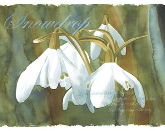 Beautiful tent gift cards printed from original water colour art.